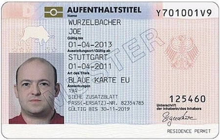 Sample Blue Card Germany